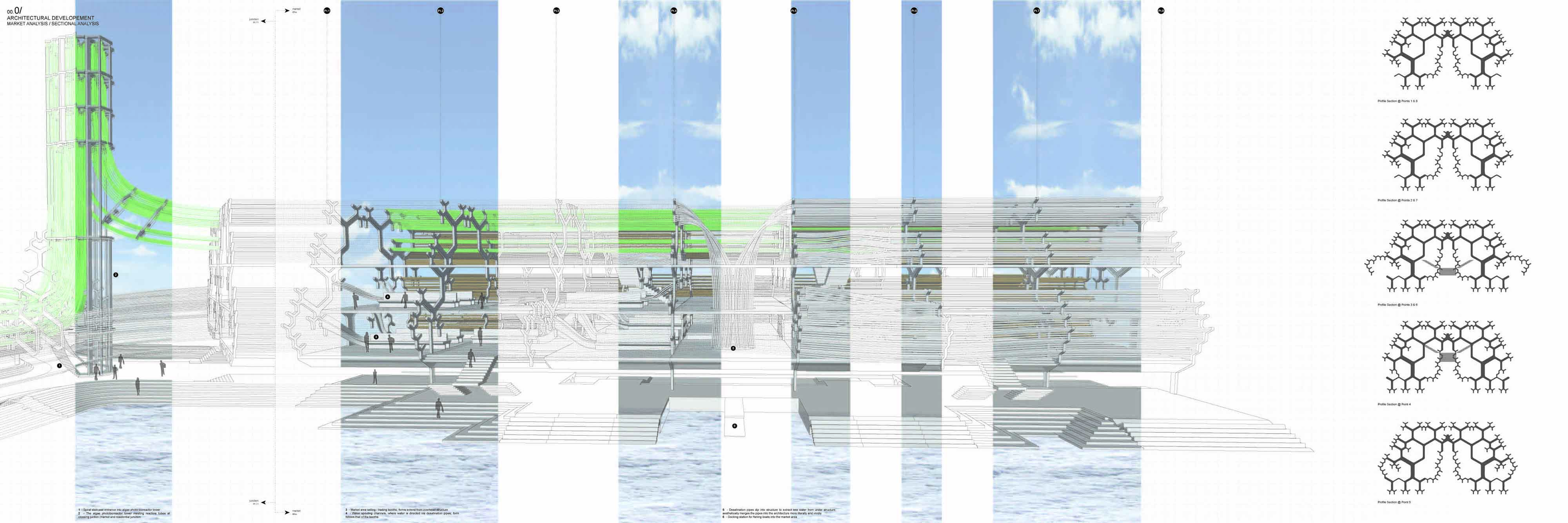 aa school of architecture projects review diploma   a drawing that highlights the market architecture from its side profile further highlighted is the