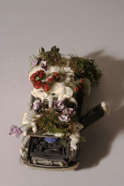 Car Greenhouse Model