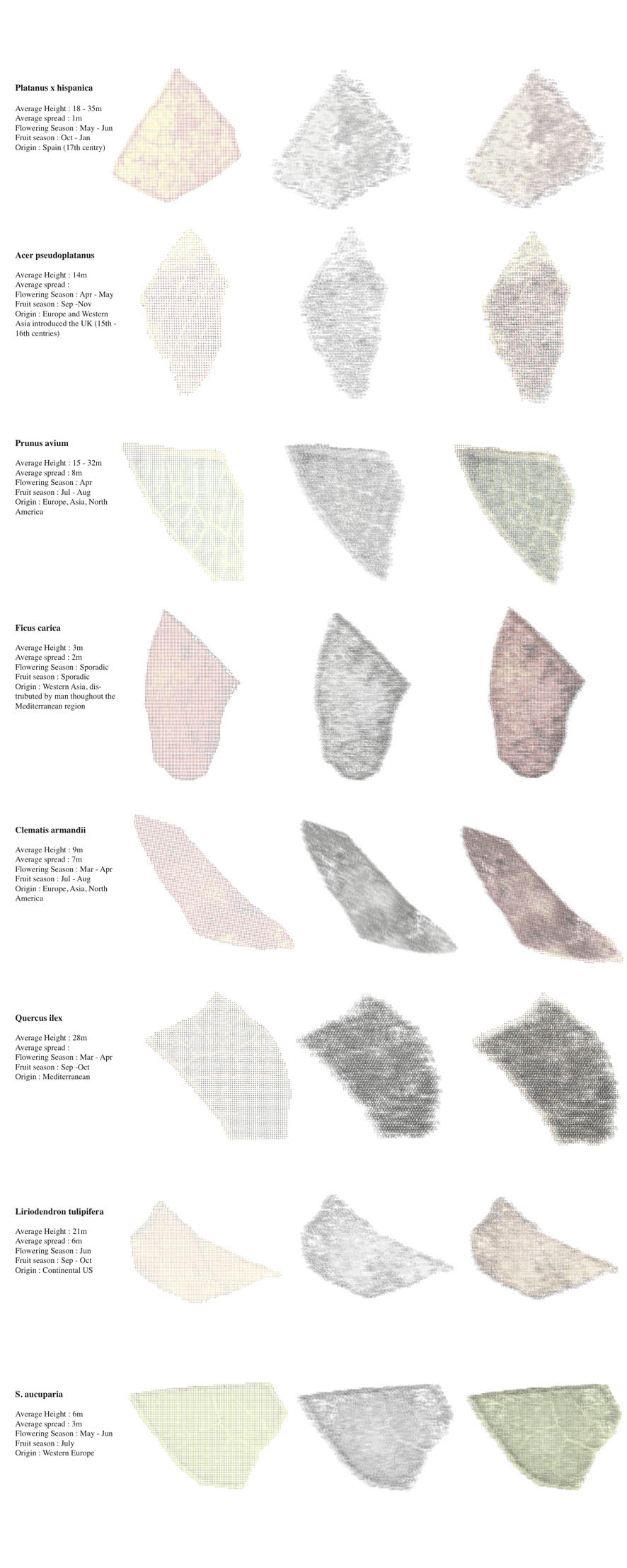 Aa school of architecture projects review 2011 inter 9 for Inter meuble tunisie catalogue 2011